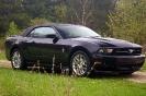 Mustang....